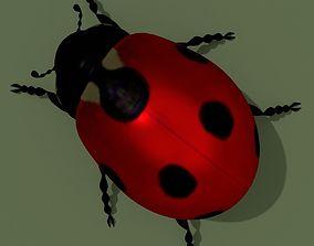 3D model LowPoly Ladybug