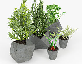 3D Concrete Kitchen Plants