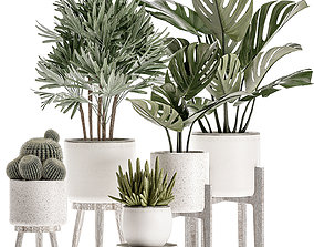 3D Plants in a white flowerpot for decor and interior 2