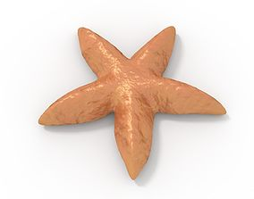 3D model Starfish Rigged