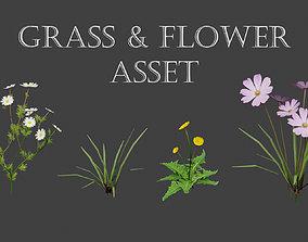 3D Grass and Flower asset