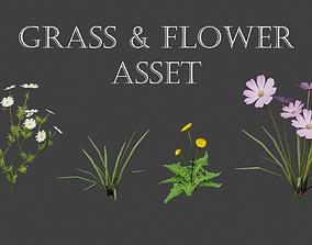 Grass and Flower asset 3D model