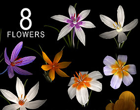 3D ANIMATED FLOWERS COLLECTION