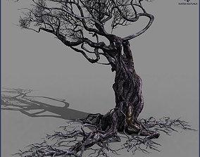 3D asset rigged Smart Tree A