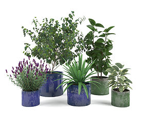3D Maya Ceramic Planters