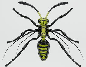 3D Wasp insect nature