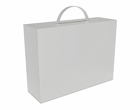 Blank Carton White Paper Package Box Mock Up 3D model