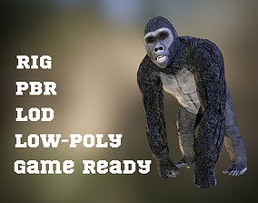 Gorilla game ready model with pbr textures 3D asset