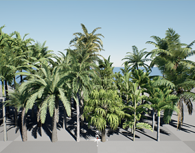 HQ Plants Volume 4 Palms for unreal engine 4 3D model 2