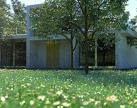 Modern House tree 3D model