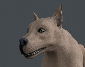 UVWD-022 Dog textures only 3D