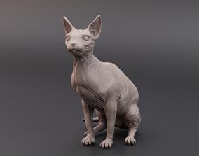 character 3D print model Sphynx cat