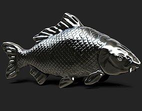 3D print model Fish Carp