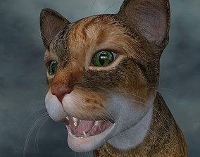 UVWC-018 Textures cat only 3D