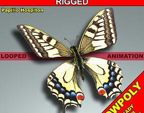 Butterfly - CorsicanSwallowtail 3D model