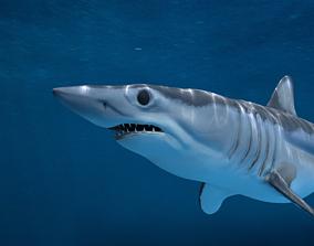 3D model Shortfin Mako Shark