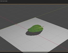 Mintleaf 3D