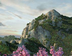 Lotus mountain 3D model