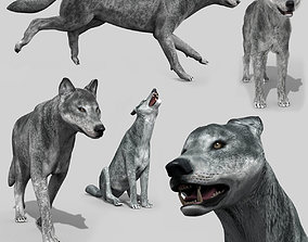 animated Wolfgang - 3d animated wolf model