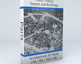 3D model Paris Streets and Buildings