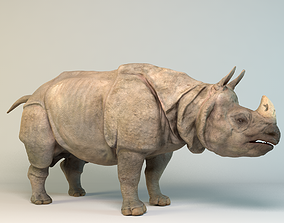 3D model Indian Rhinoceros