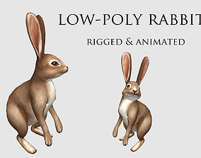 hare rabbit bunny animation 3D model