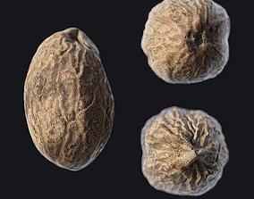 3D model Nutmeg A
