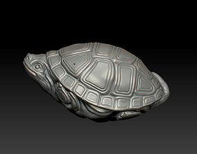tortoise 3D print model art