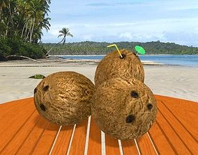 3D model Coconuts and Table