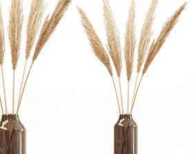 3D Dry branches of pampas grass in glass vase 4