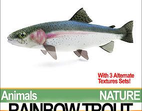 3D Rainbow Trout