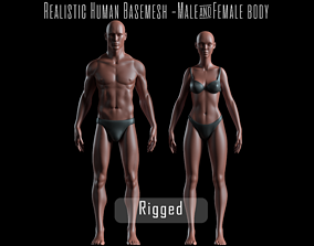 Realistic Human Basemesh - Rigged - UVMapped - 3D model 3