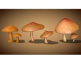 Mushrooms 3D grass
