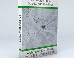 3D Pittsburgh Streets and Buildings