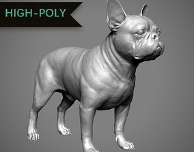 3D printable model French Bulldog High-Poly