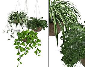 Houseplant 43 3D model