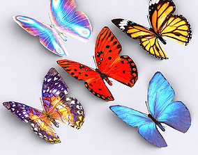 animated 3DRT - Butterfly