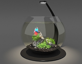 animals 3D Aquarium bowl