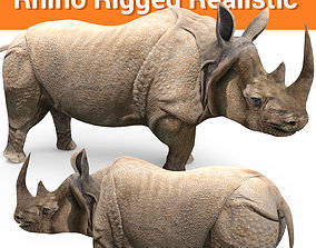 rigged 3D rhino rhinoceros Rigged realistic low poly