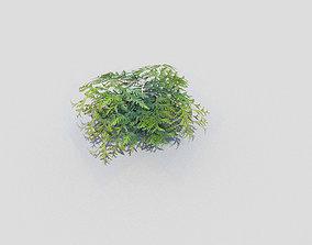 low poly shrub 3D asset game-ready bush