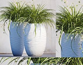 Plants 100 3D