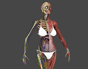 Motion Capture Female Anatomy 3D asset