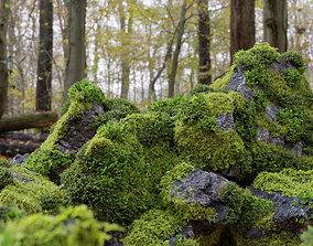 Moss 7 Species and Stones - PBR Asset Kit 3D model