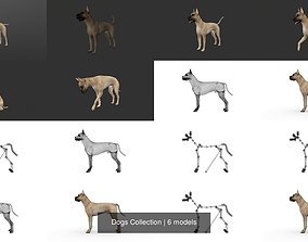 3D Dogs Collection