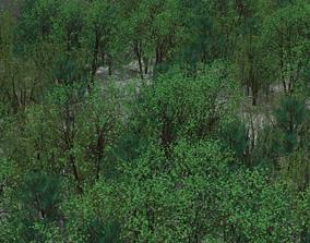 3D model VR / AR ready Trees Pack