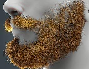 3D model Beard RealTime 14 Version 2 Low Poly
