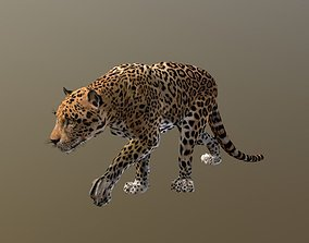 Jaguar 3D asset animated