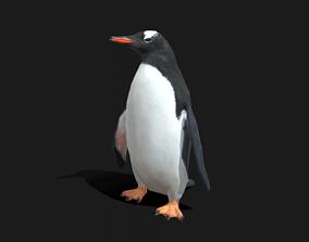 Gentoo Penguin - Animated 3D asset