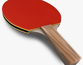 3D Ping pong paddle