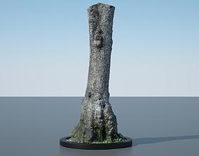 3D plant Tree Trunk - 11